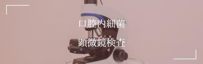 口腔内細菌 顕微鏡検査
