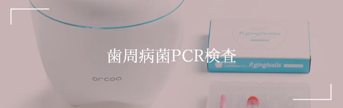 歯周病菌PCR検査